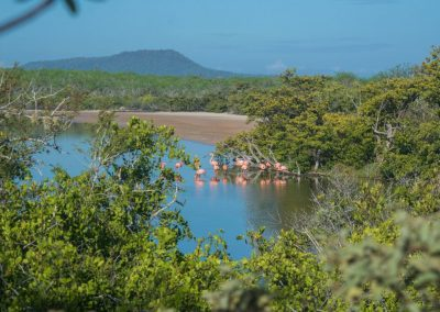 Galapagos-Isla-Floreana-3